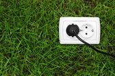 Fotografie Strom-Buchse auf grünem Gras Hintergrund
