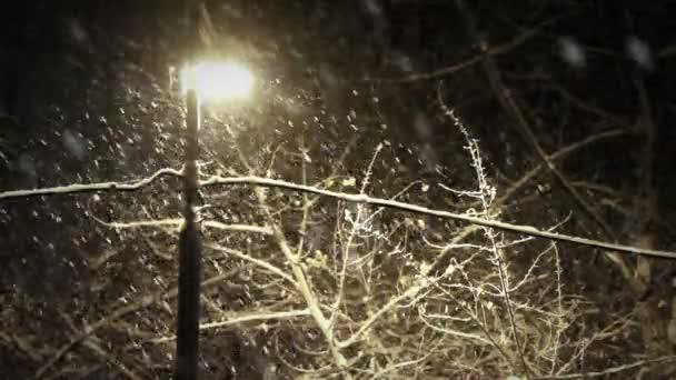 noční sněžení