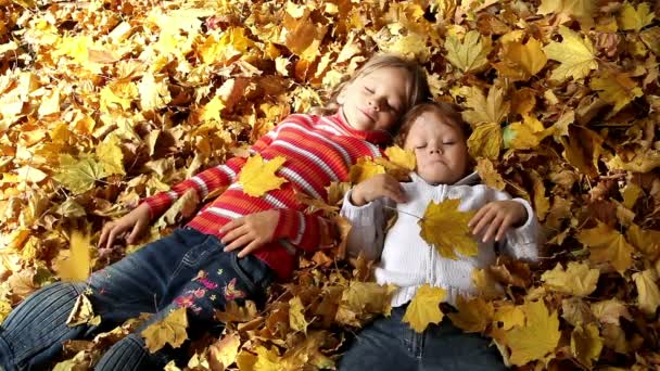 Children in the yellow leaves