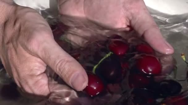 Hands close-up of ripe cherries are washed in a basin of water