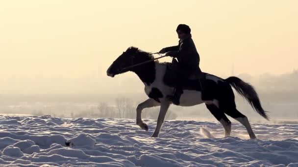 Horseman. A man on a horse galloping on a snowy field