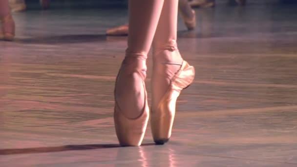baletka ukazuje klasické baletní pas