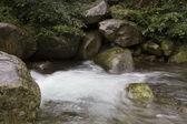 flusso naturale