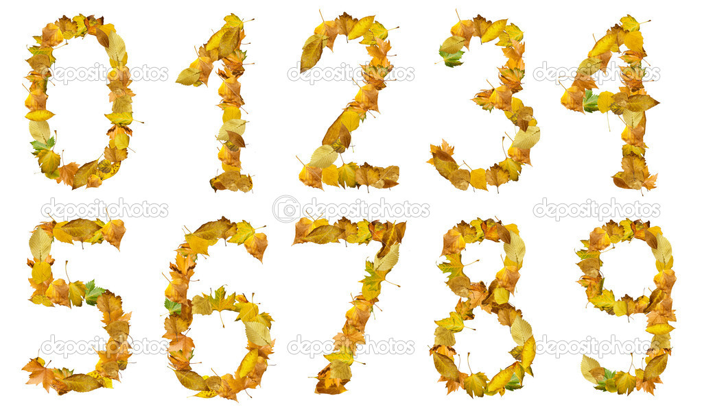 Set of numbers made of autumn leaves