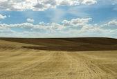 Fotografia terreno agricolo