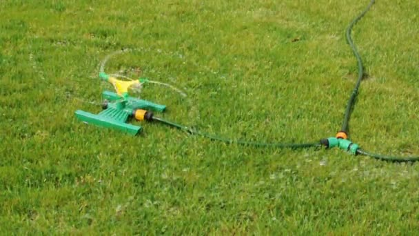gyep esőztető fröccsenő víz feletti zöld fű.