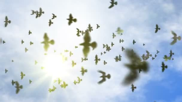 Transición Animado Volando Bandada De Palomas Con Alfa Aislante