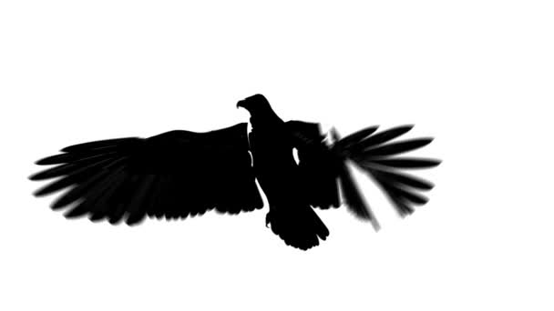 Sziluettjét hurkolás a repülő sas fél megtekintése