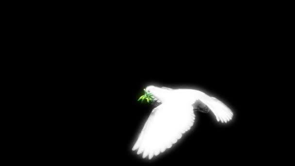morfing dekorativní holub s alfa kanálem