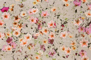 Vintage texture with Pink Flax flowers