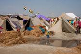 Gyermek járni ellen a sátrak, a fesztivál Kumbh Melá