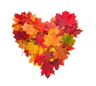 Autumn heart