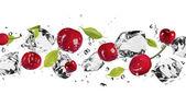 Fotografie Ice fruit