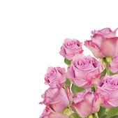 Fotografia bouquet di Rose