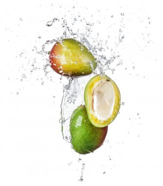 Pieces of mango in water splash, isolated on white background stock vector