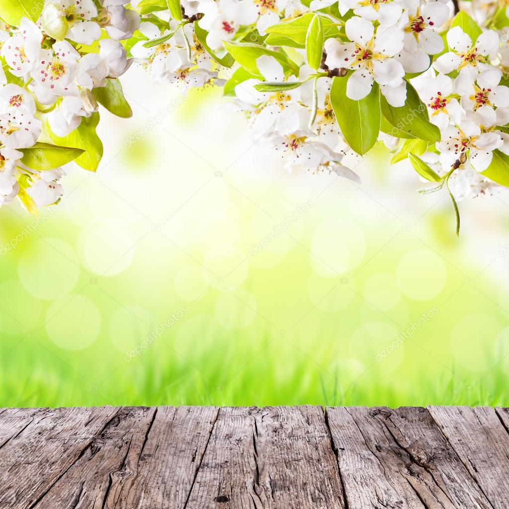 Spring Background With Free Space For Text Stock Photo C Jag Cz