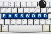 Zabezpečení online