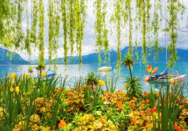 Flower shore and mountains, Montreux. Switzerland