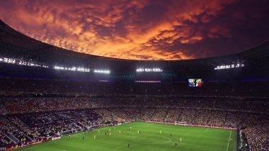 Euro-2012: Ukraine vs France match in Donetsk