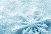 Photo Winter background