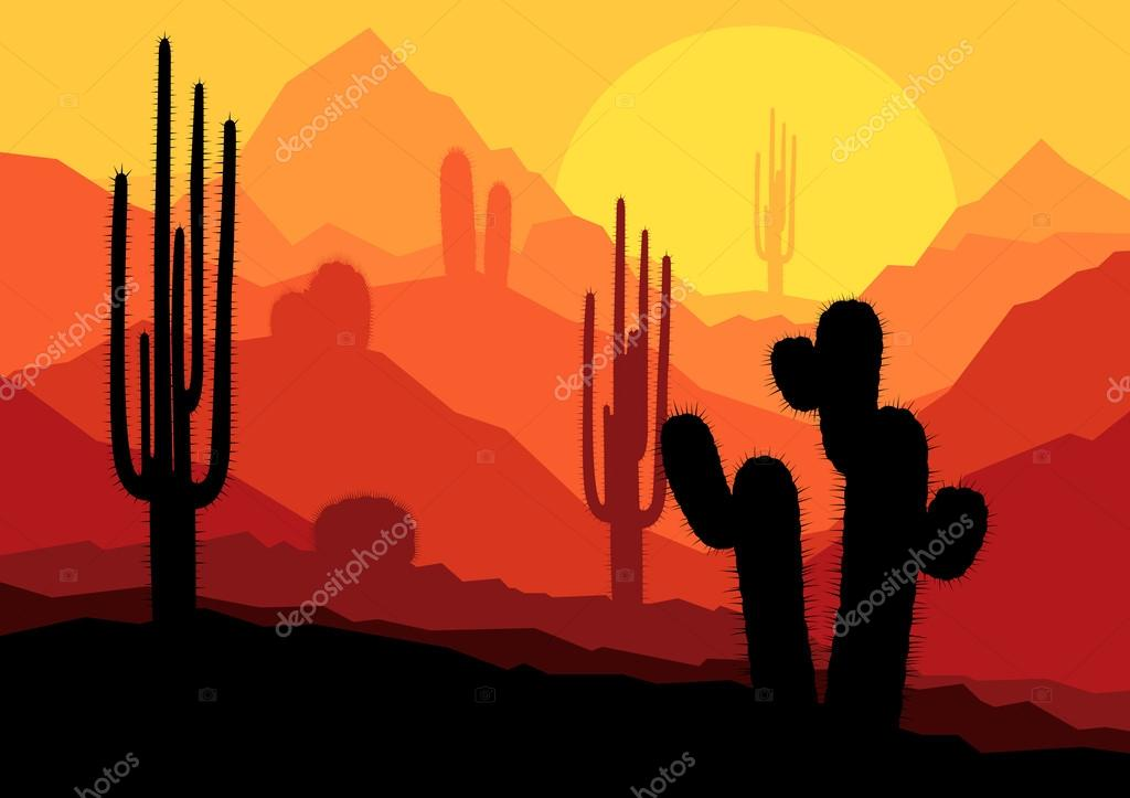 Cactus plants in Mexico desert sunset vector