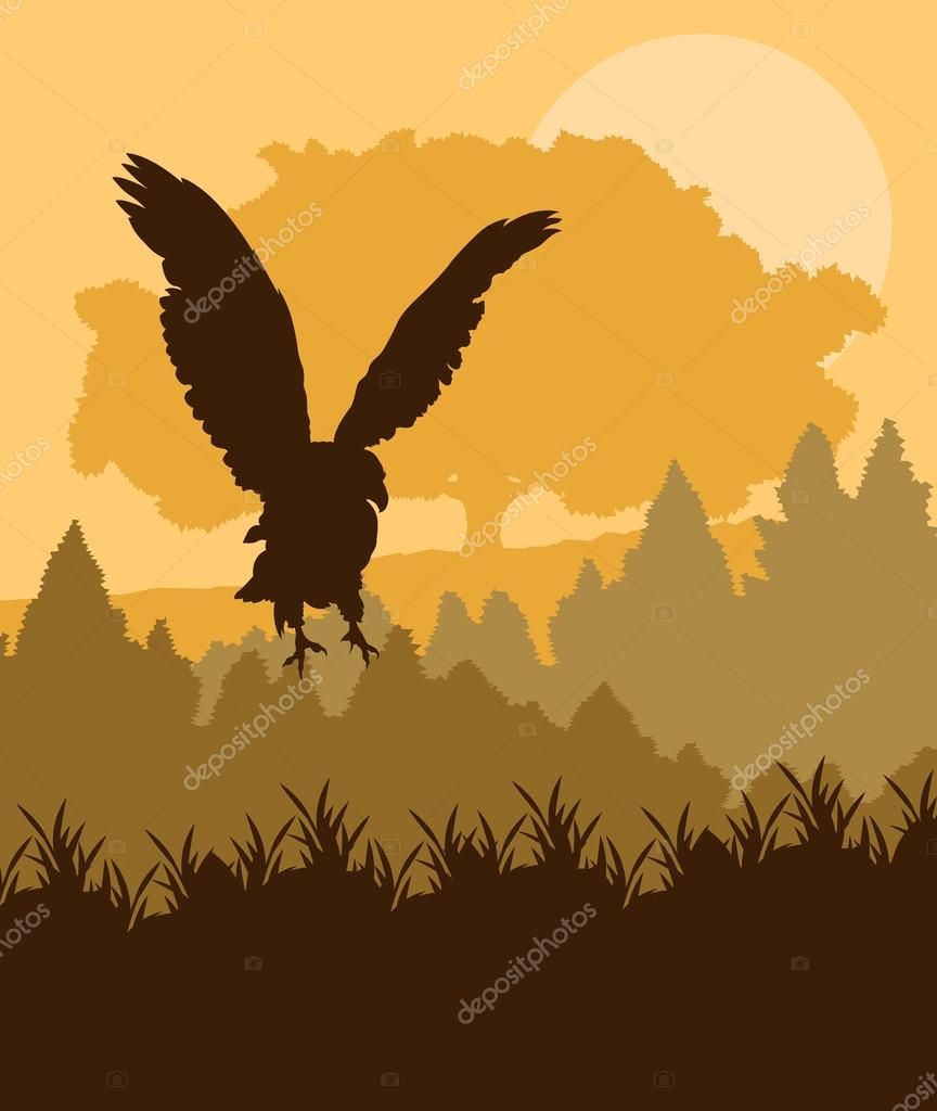 Swooping eagle attacking in forest vector