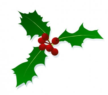 Christmas holly berry vintage holiday decoration background vect