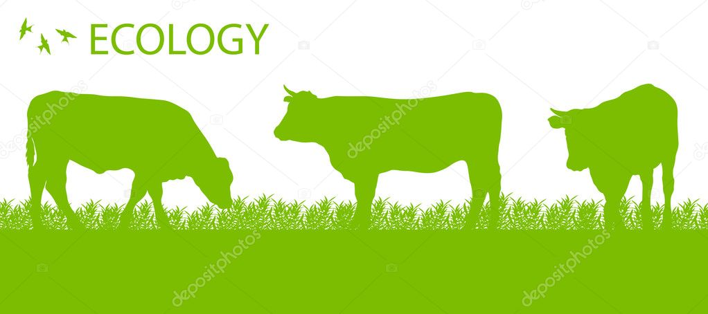 Store cattle ecology background organic farming vector