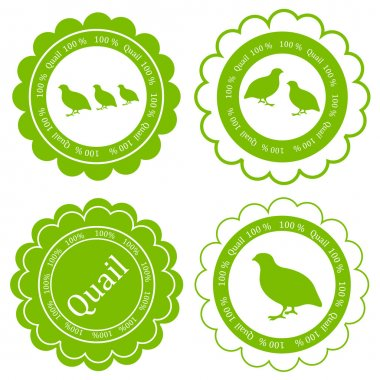 Quail meat vector background label stamp green farm concept
