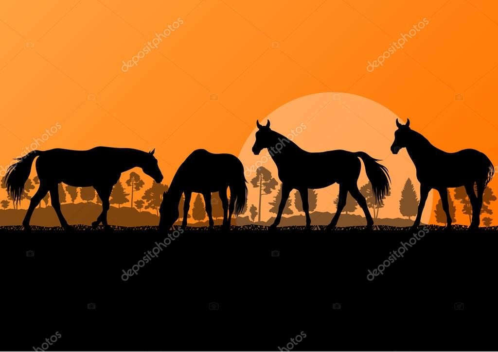 Countryside farm horses silhouettes in wild nature mountain fore