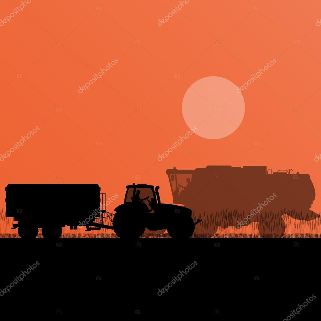 Agricultural combine harvester and tractor in grain field season