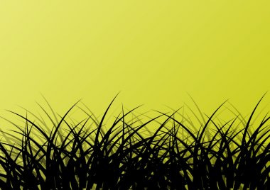 Grass detailed silhouette landscape illustration background vect