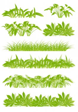 Tropical exotic jungle grass and plants detailed silhouettes lan