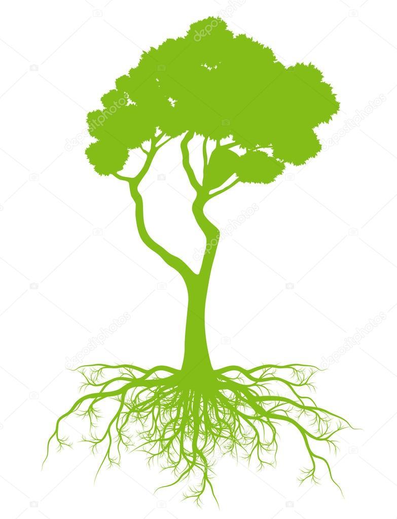 Дерево с корнями векторная концептуальная карта фоновой ...