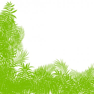Exotic forest jungle leaves, grass and herbs vector background