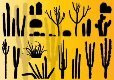 Cactus plants detailed illustration collection background vector