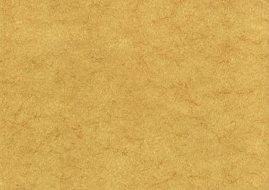Parchment Texture Background very large format