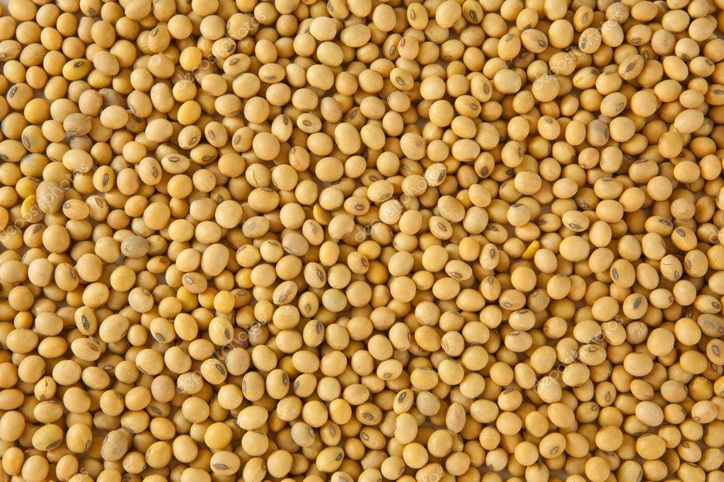 Soy bean pattern