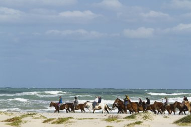 Horesback riding