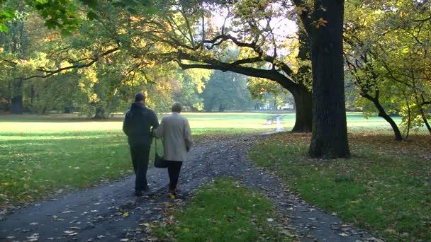 šťastný starší pár v parku na podzim