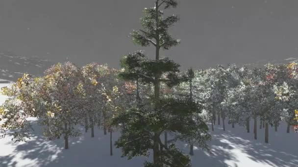 Karácsony, varázslatos erdő