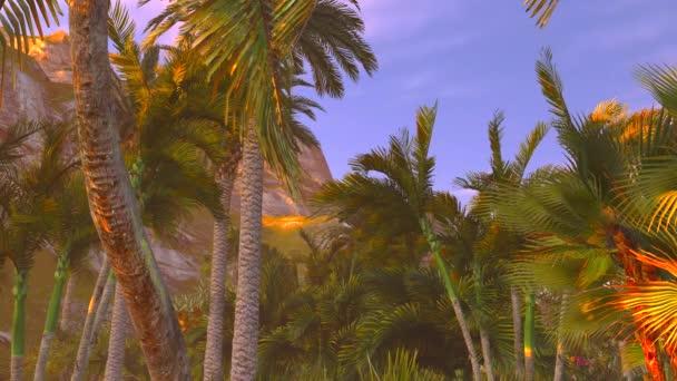 tropický ráj