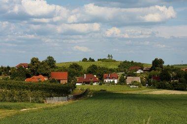 Southern Poland near Trzebnica