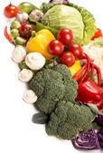 raccolta di verdure fresche