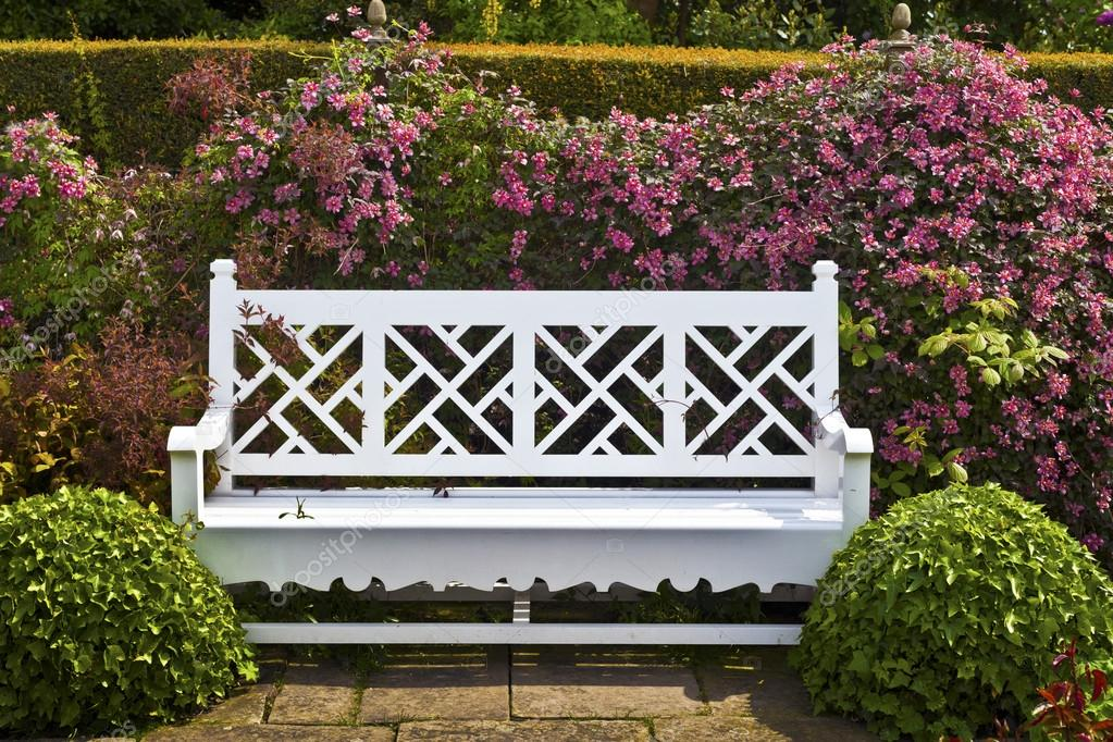 White Garden Bench With Topiary Shrubs And Pink Clematis. U2014 Stock Photo