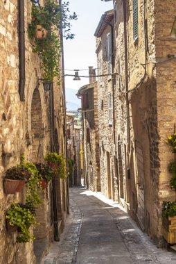 Spello (Umbria)