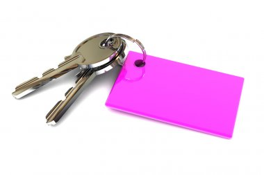 Keys with a Blank Pink Keyring