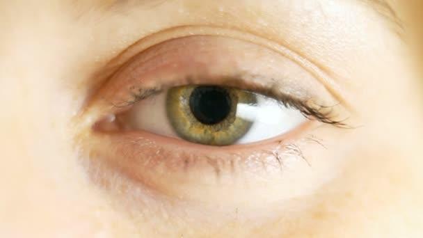 Eye. Close up