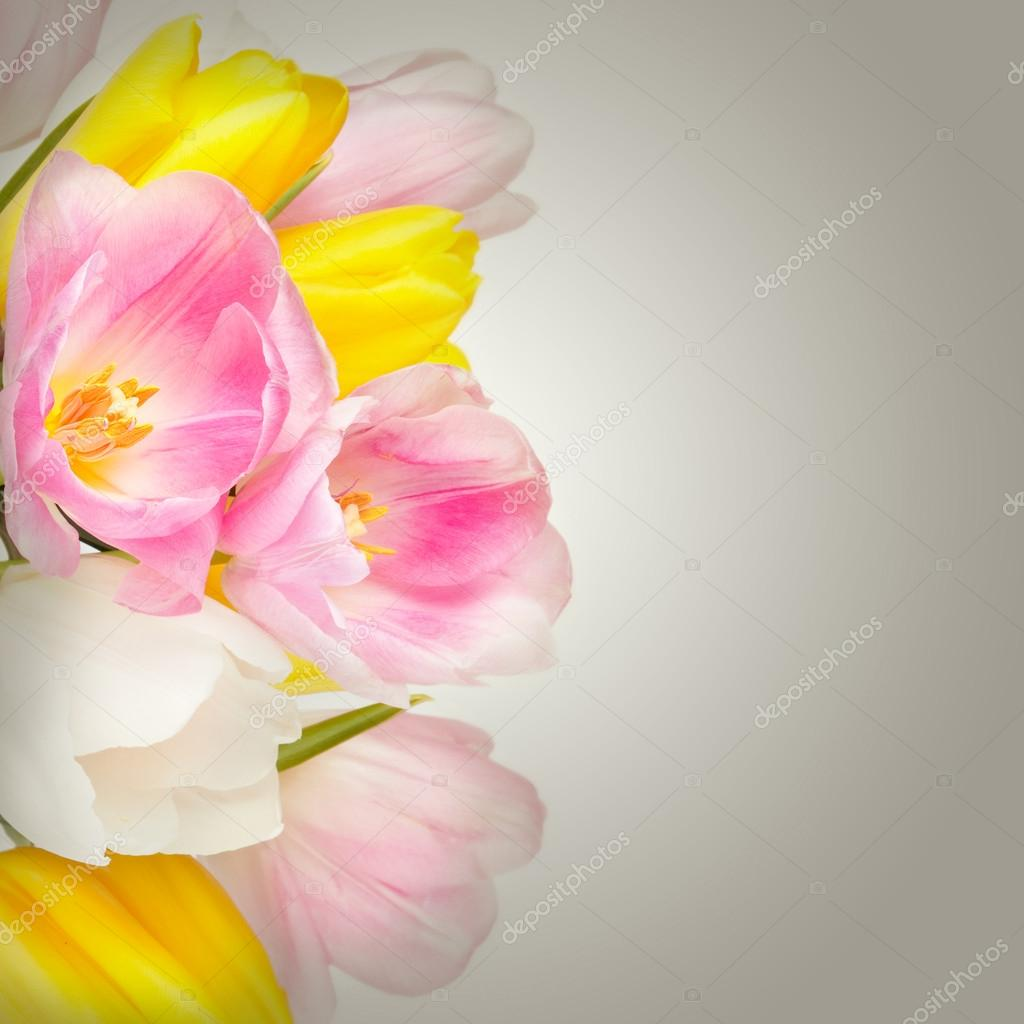 Bouquet Of Beautiful Tulips Flowers In Vase Isolated On White