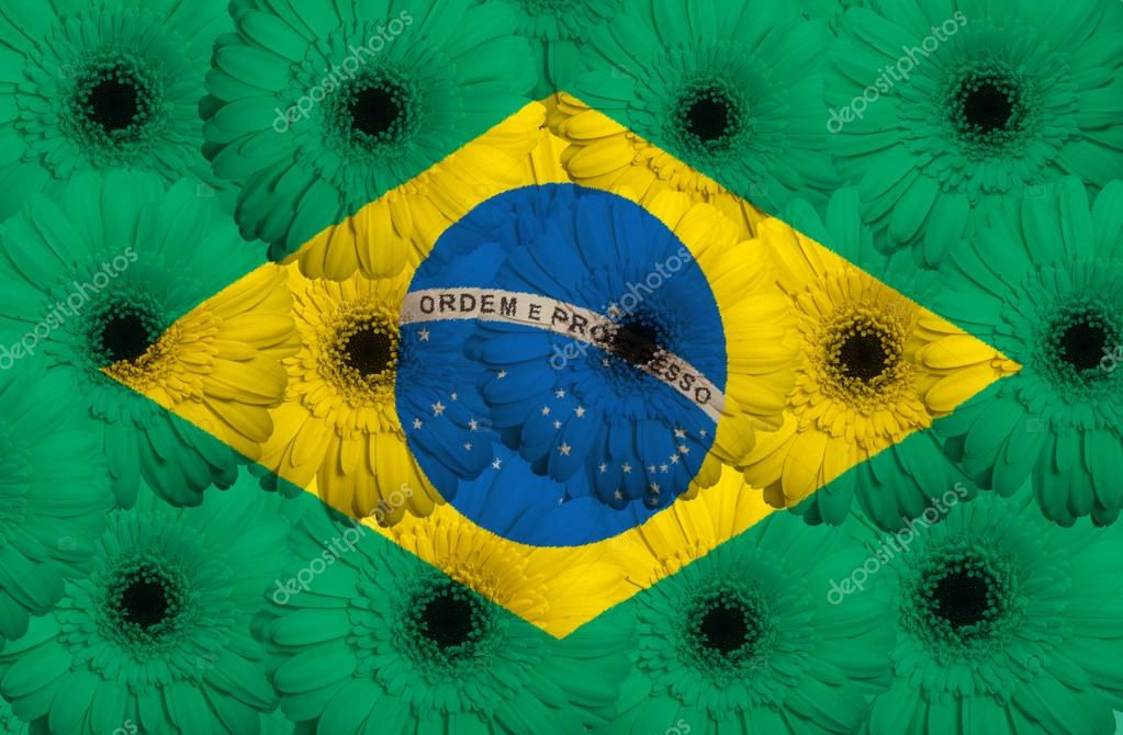stylized national flag of brazil with gerbera flowers